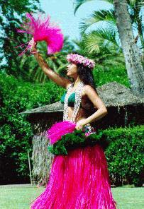 Hawaii Dancer