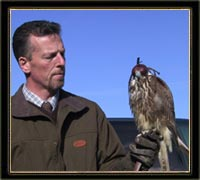 Kinnitty